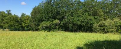 Grand et beau terrain de 2000 m² idéalement exposé est idéal pour un projet de construction sur notre belle région de la Dordogne.