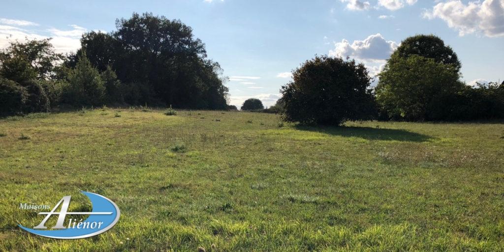 terrain-grand-campagne-a-batir-st-crepin-d auberoche-maisons-alienor