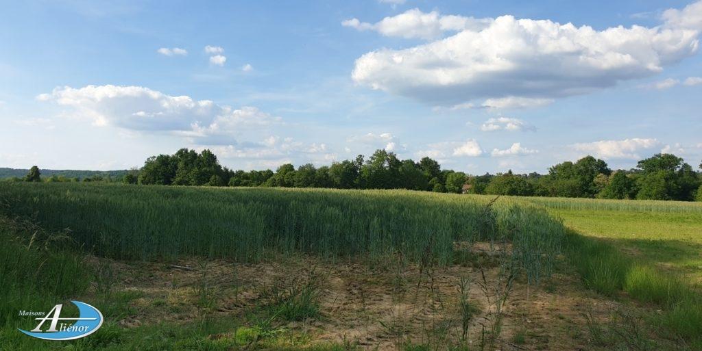 terrain-a-vendre_razac_gravelle_maison_neuve_construction_maisons-alienor_contemporaine_bordeaux_autoroute