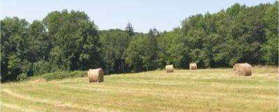 Beau terrain sur la commune de Nontron, 2000m² au calme sur les hauteurs.Terrain Plat.