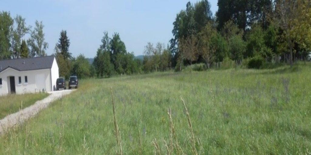 24110 Saint-Léon-sur-L 'Isle - Beau terrain plat avec arbres fruitiers, entièrement constructible, d'une superficie totale de 1123m². Tous les réseaux sont en limite de parcelle. Documents d'urbanisme à disposition. Possibilité de construire un plain-pied. référence annonce : BOMJ6