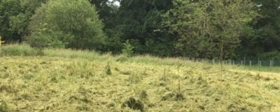 terrain-a-batir-maisons-alienor-st-leon-sur-lisle