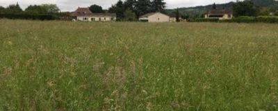 terrain-a-vendre-a-construire-st-leon-sur-lisle-maisons-alienor