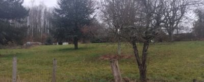terrain espartignac_maisons_alienor_agence_de_brive
