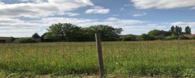 terrain-vendre-brive-correze-maisons-bois-cosntructeur-de-maisons-individuelles-en-bois-gironde-lot-corrèze-dordogne