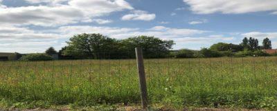 terrain-vendre-mansac-correze-maisons-bois-constructeur-de-maisons-individuelles-en-bois-gironde-lot-correze-dordogne